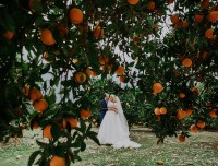 cyprus wedding ellyvia